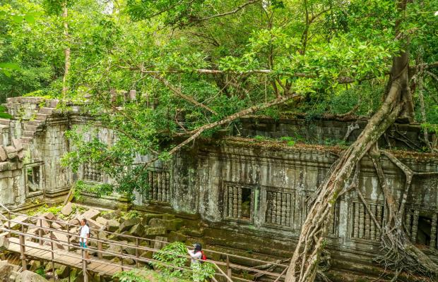 Beng Melea Temple Day Tour